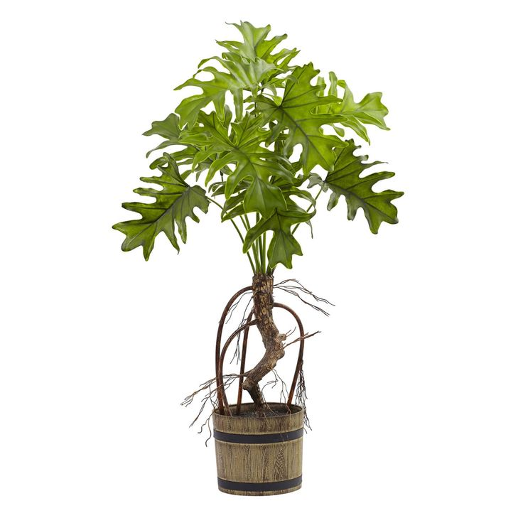 Nearly Natural Split Philo Silk Plant with Bucket Planter - 6858