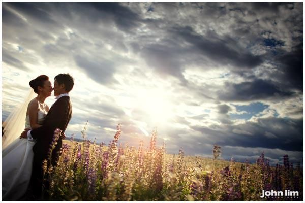 What's a #summer #photoshoot without #flowers; and these #lupins are everywhere, almost. #prewedding #photoshoot #newzealand #scenery #sky