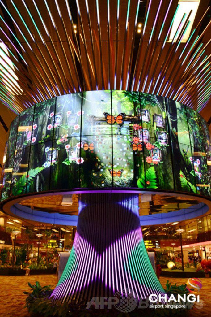 シンガポール・チャンギ国際空港(Changi Airport、シンガポール空港)にある高さ9メートル近い「ソーシャルツリー(Social Tree)」。(c)Relaxnews/Changi Airport ▼28Mar2014AFP|旅行者が選ぶ「世界最高の空港」、シンガポールが2連覇 http://www.afpbb.com/articles/-/3011165 #Changi #Changi_Airport #Social_Tree #Singapore