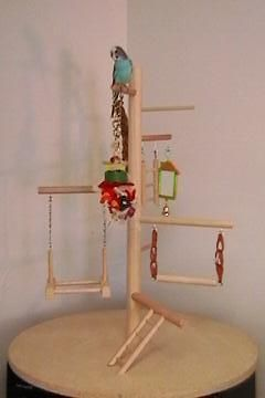 parakeet toys - Google Search