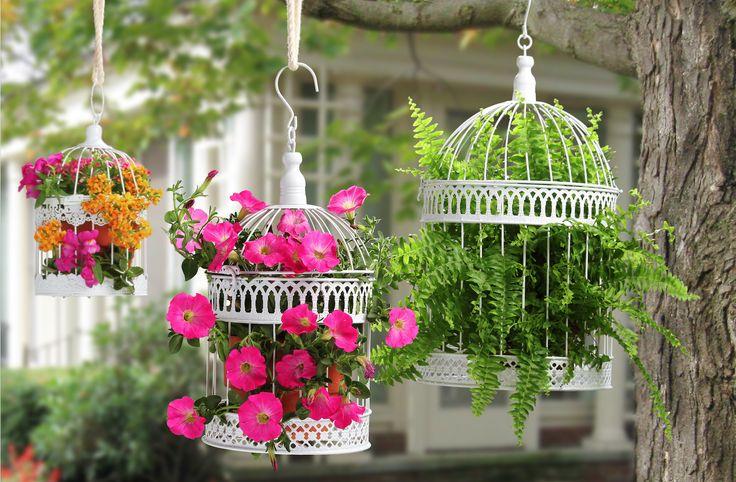 Cuelga jaulas decorativas en tu jardín, hará que ese espacio refleje tu toque especial.