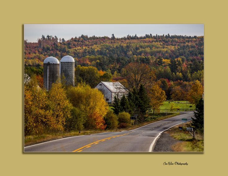 On my way to Truro through the Rawdon Hills. It's in Greenfield Nova Scotia. www.janwanphotography.com