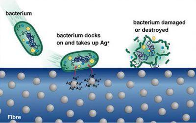 Illumin - Silver Nanoparticles: A Valuable Weapon in Microbial Warfare