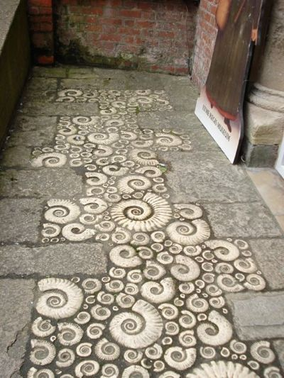 Coade stone, ammonites in the pavement outside the museum, Lyme Regis.