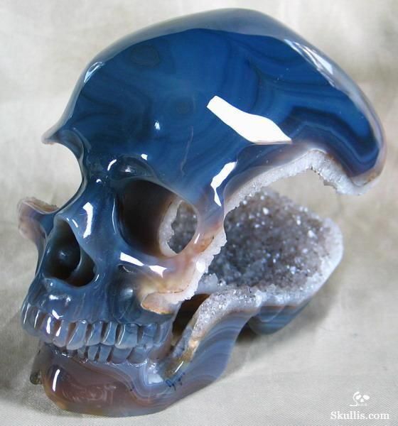 78 Best Images About Skulls On Pinterest