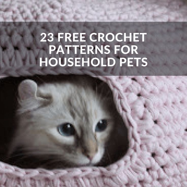 There is nothing as satisfying as making something with your own two hands for someone you love. Here are a few free patterns for you crocheters who also have a furry friend who would appreciate something hand made with love.  Cats Beds: Cat bed, Cat Igloo, Nest, Cat CaveA, Cat Cave B, Cat Cave...Read More