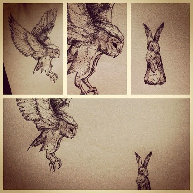 Owl and bunny rabbit in fine liner