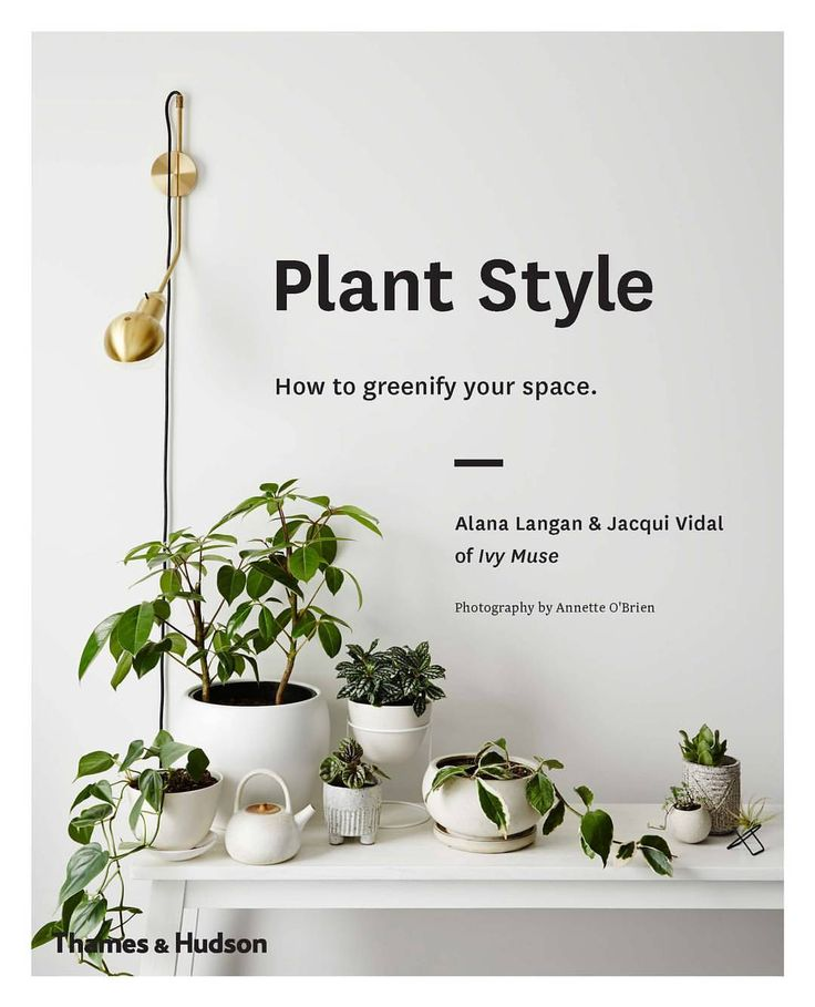 """1,860 Likes, 52 Comments - IVY MUSE (@ivymuse_melb) on Instagram: """"BIG NEWS to start the week.. we wrote a book! We're over the moon to share 'PLANT STYLE; How to…"""""""