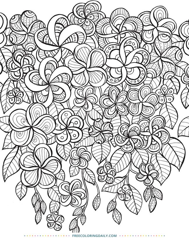 Free Floral Zentangle Coloring Coloring Pages Coloring Books