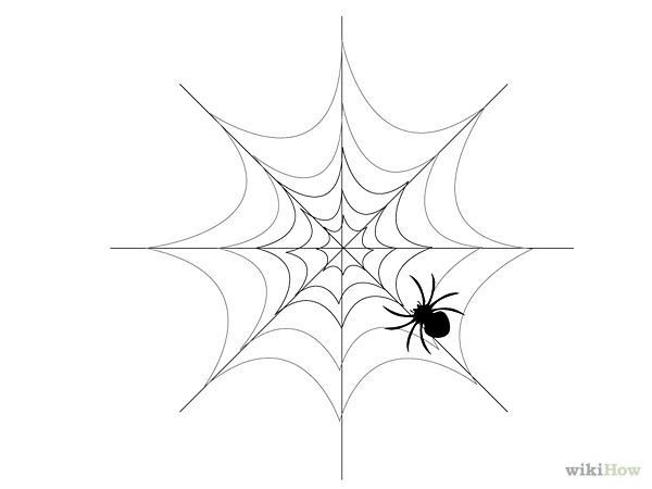 5 Ways To Draw A Spider