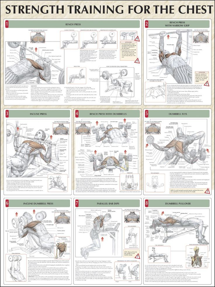 17 Best images about Chest Exercises and Workouts on ...