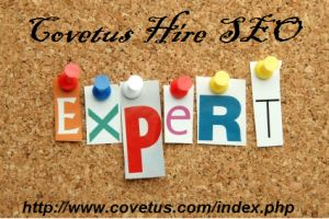 Covetus Hire SEO Expert Overview http://www.covetus.com/index.php
