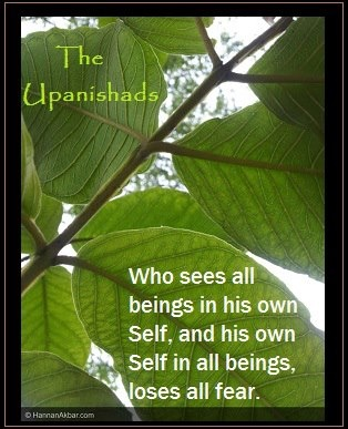 """""""Who sees all beings in his own Self, and his own Self in all beings, loses all fear.""""   ~ The Upanishads   <3 lis"""