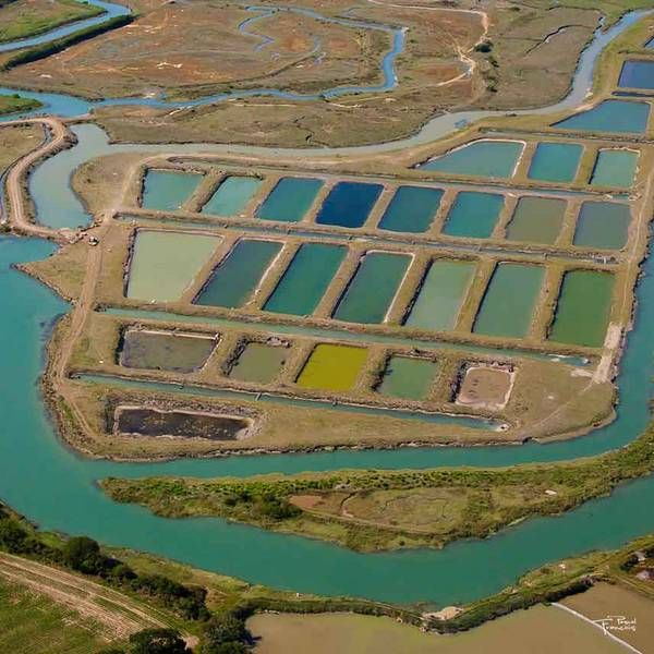 17 best images about salt evaporation ponds on pinterest for Design of evaporation pond