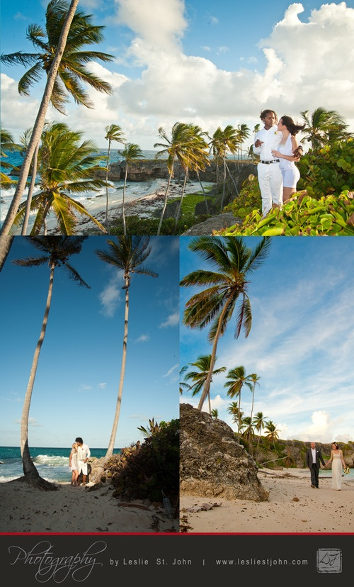69 Best Images About Barbados