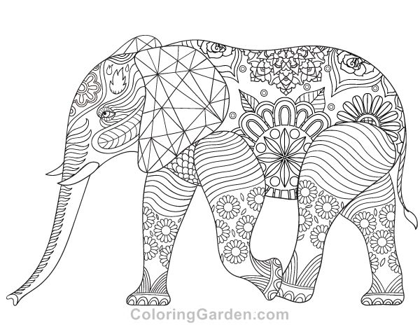 Adult Colouring Images On Pinterest