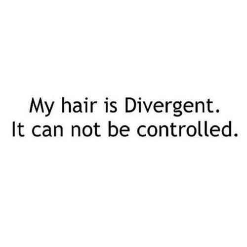"This actually made me laugh cuz my hair is uncontrollable. I need to use this line lol A pun about hair: | 17 ""Divergent"" Puns That Are So Bad They're Good"