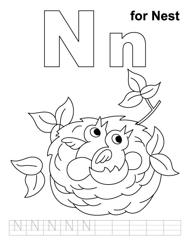 N for nest coloring page with handwriting practice download free n for nest coloring page