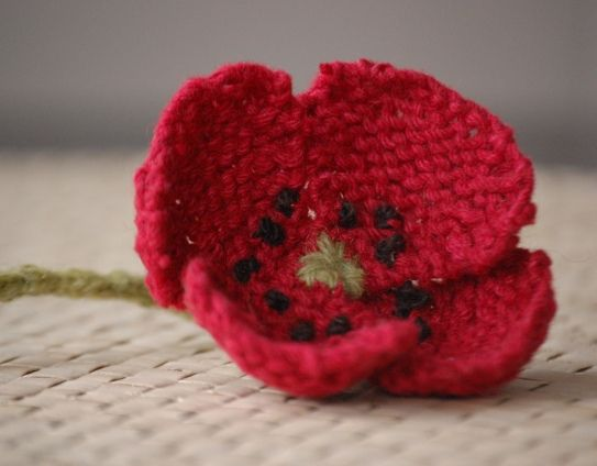 Field Poppy pattern by Lesley Stanfield available for free on Ravelry and on Lion Brand yarn. Knit Poppy by dodiegirl.