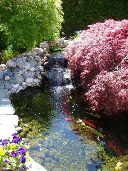 Custom koi pond design and installation design ideas for Custom koi ponds