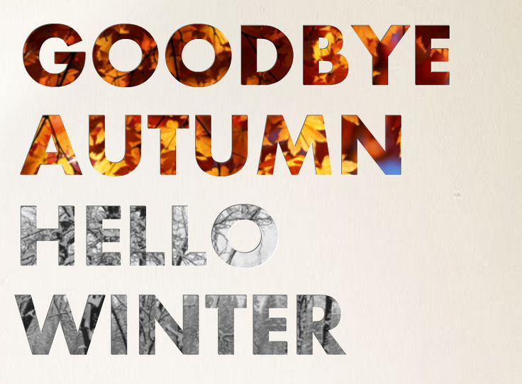 Goodbye Autumn Hello Winter                                                                                                                                                                                 More