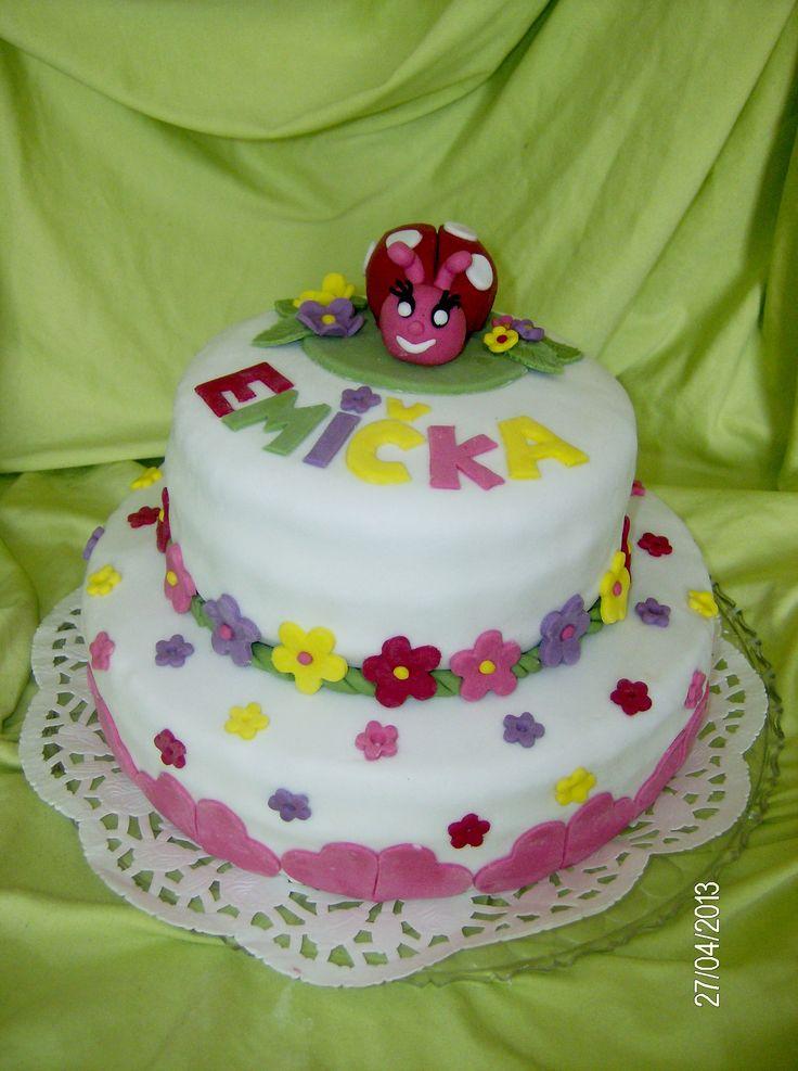 1st birthday ladybird