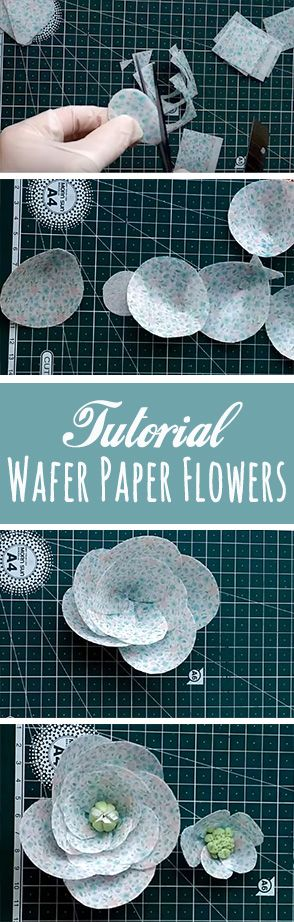 How to Make Wafer Paper Flowers for cake - tutorial by NandaSugarArt and Julia Nanda.  Wafer paper continues to gain popularity in cake decorating because of its low ticket price and ease of use for beginner and professional cake decorators.   For the flower was used printing with food ink from the printer.  what is wafer paper - tutorial how to make flowers for cake decorating
