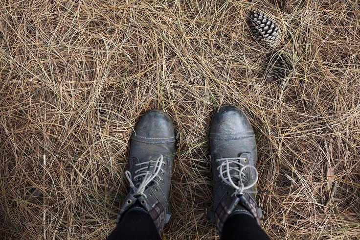 아름 다운, 부츠, 근접, 색, 침 엽 수 콘, 신발류, 건초, 높은 각도 샷, 야외 활동, 사람