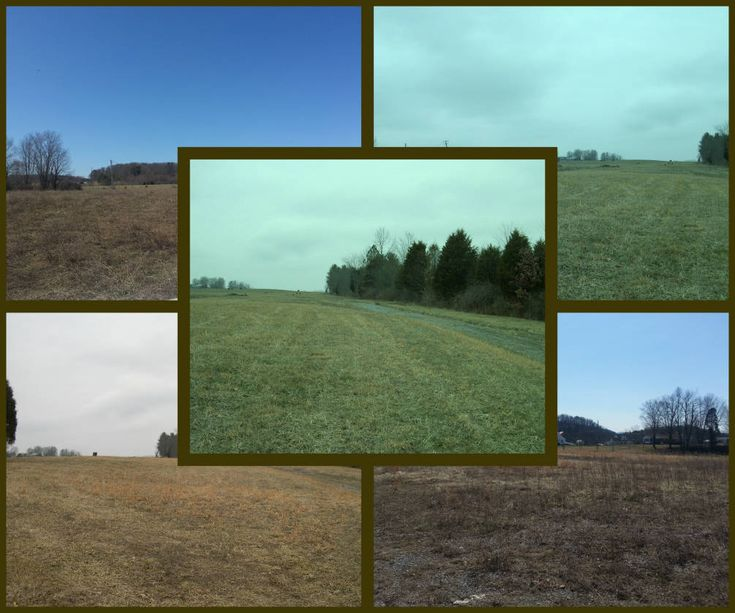 Eight level and cleared acres for sale in Ballard WV 24918