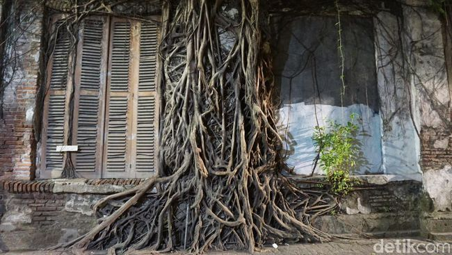 Banyak yang belum tahu, kalau Kota Lama Semarang punya sudut paling instagenic. Bukan gedung, tapi justru pohon besar yang nempel dengan rumah tua. Unik!