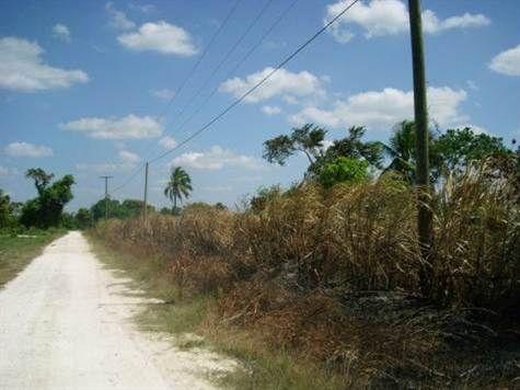 Lakefront Lot for sale in Corozal Bay, Belize | KGI Realtor