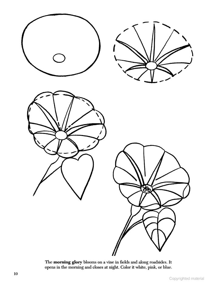 100 best How to draw tutorials: Flowers images on