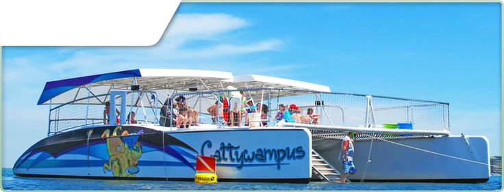 Cattywampus Catamaran sailboat charters Destin Florida Boating Cruises - we did an AWESOME Snorkel and dolphin watching cruise with them in April.  Everyone LOVED it!!