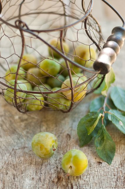 Plums and wire basket