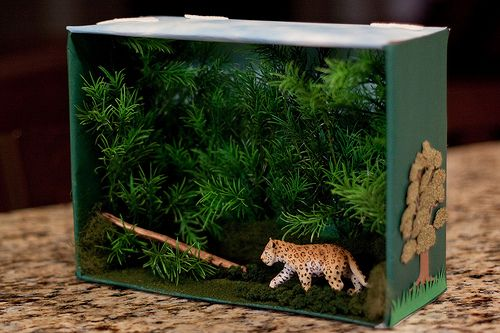 1000 images about 1st grade animal habitats on pinterest for Habitat container