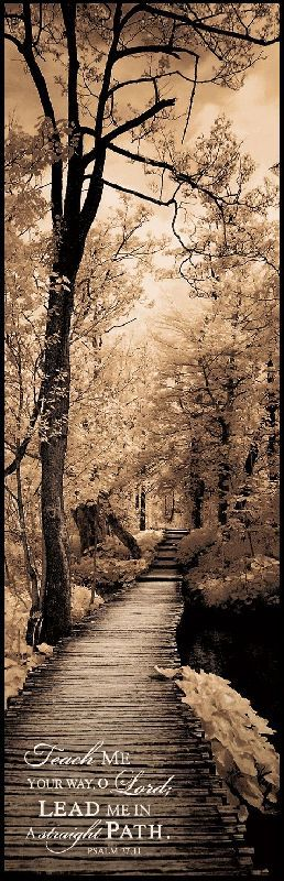 Teach me Your way, O Lord, LEAD me in a straight path. Psalm 17:11