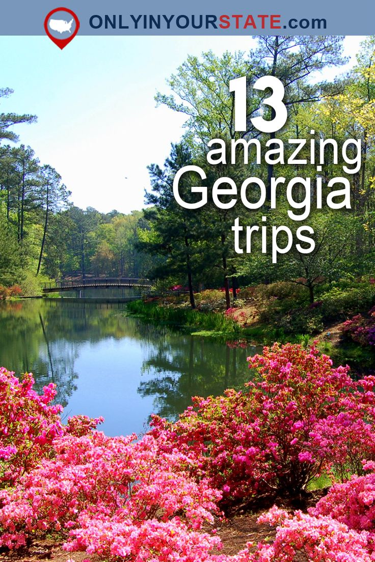 Travel | Georgia | Attractions | USA | Day Trips | Hidden Gems | Georgia Vacations | Weekend Getaways | Destinations | Amish | Roadside Attraction | Gardens | Mountains | Nature | Outdoor | Adventure | Bucket List | Places To Visit | Things To Do | Places To Stay | Cabins | Coastal | Restaurants | Places To Eat | Outdoor Dining | Waterfront | Tunnel of Trees | Scenic Drive | Waterfalls | Blue Hole | Campground | Camping | Aboveground Cave | Scenic Hikes | Trails | Canopy Walk | Glampgrounds