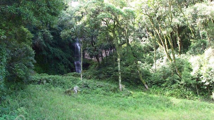 São Lourenço do Oeste - SC - Cachoeira na estrada