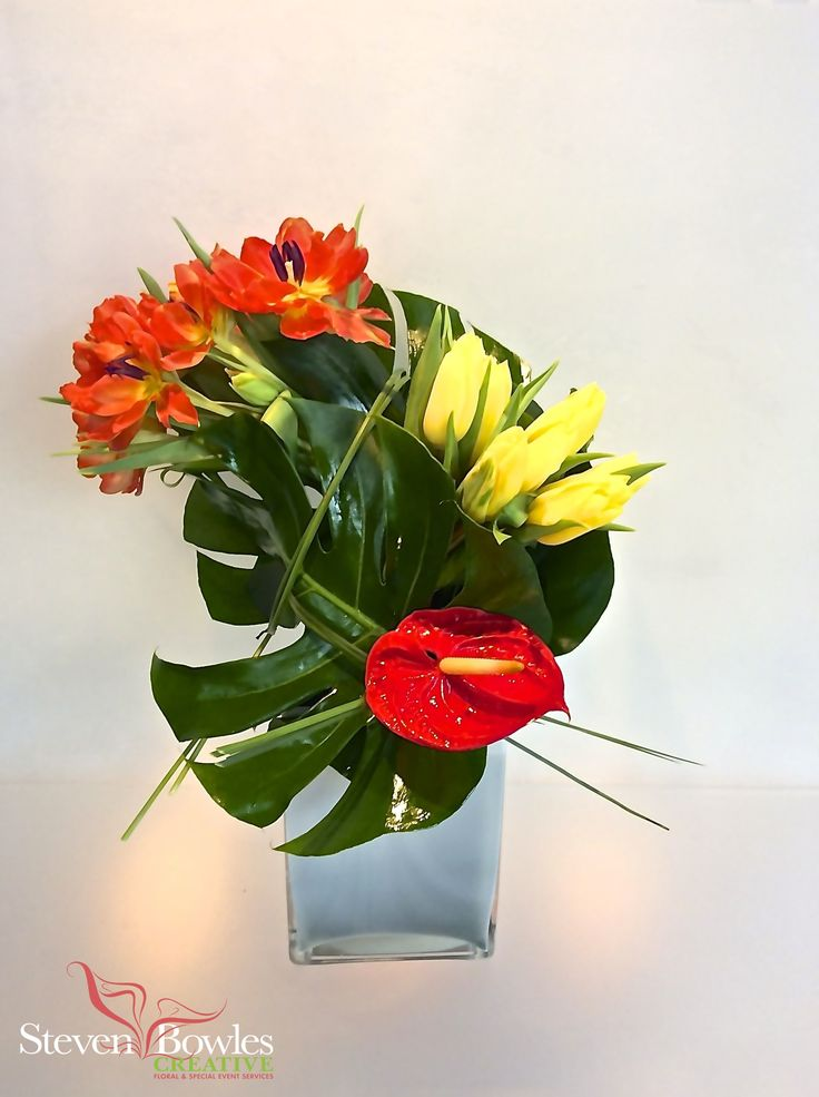 Modern tulip s flower arrangement designed by steven