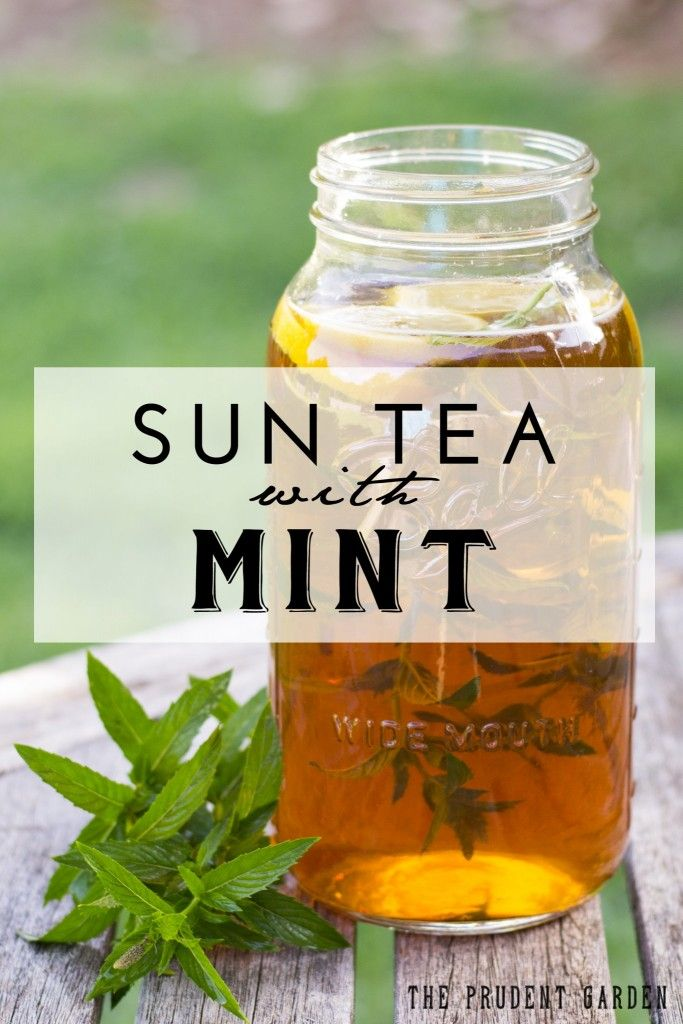 Sun Tea With Mint | Sun Tea, Mint and Teas