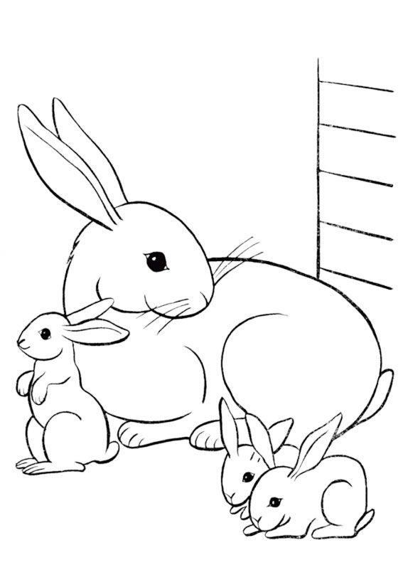 Disegni Conigli Da Colorare.45 Disegni Di Conigli Da Colorare Disegno Coniglio Libri Da