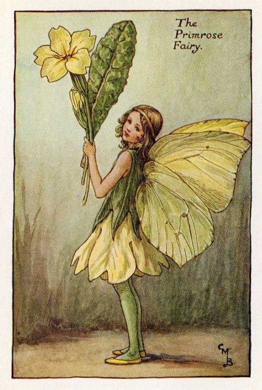 Primrose Flower Fairy Vintage Print c1927 Cicely by TheOldMapShop, $16.95