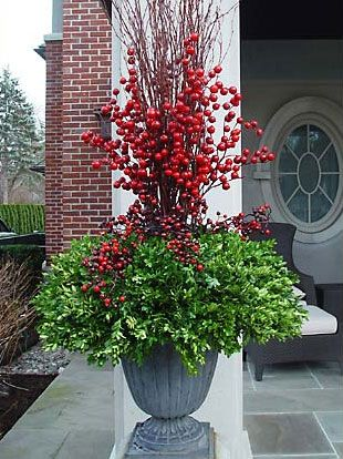 Design 101 - Holiday Decorating with Empty Planters   November 17, 2010 | Mike Voyles  -   beautiful planter with non-traditional greens and branches such as rosemary, boxwood, magnolia, eucalyptus, vine maple and curly willow