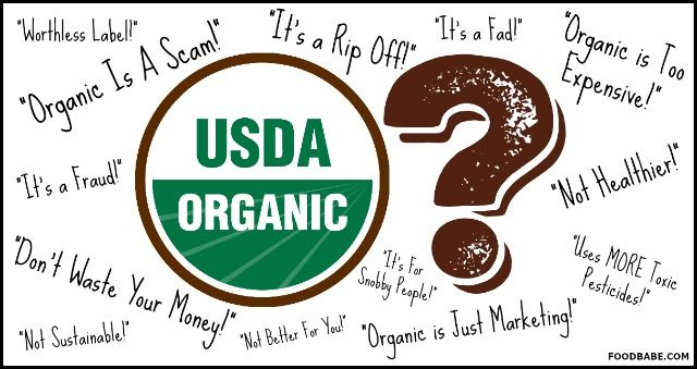 Is Organic Food A Scam?
