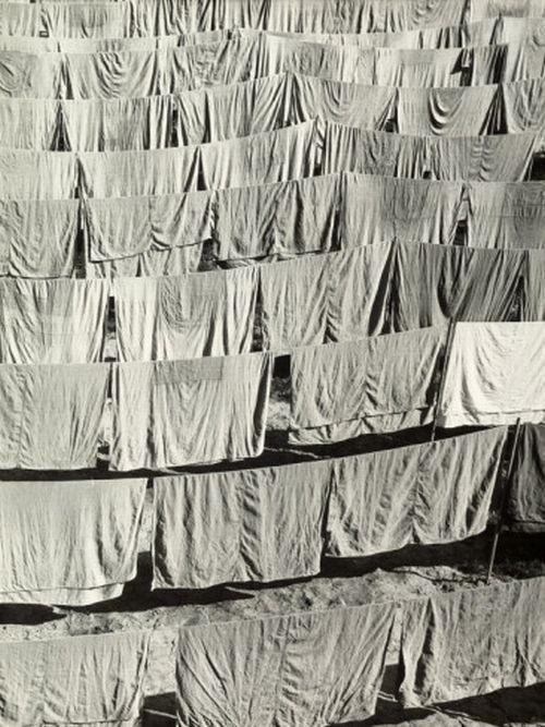 Laundry Hung in the Sun, Vincenzo Balocchi