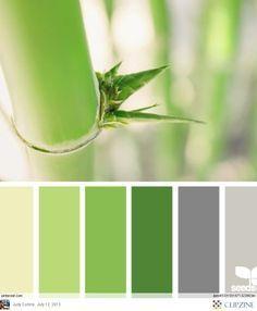 Harmonie vert bambou I Design I Couleur I Inspiration I Camaïeu I Peinture I