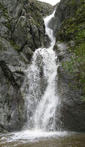 Murietta Falls-Ohlone Wilderness Trail