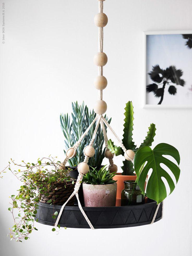 ANVÄNDBAR hängande bricka i trä och natursnöre blir en egenkomponerad hängande trädgård.