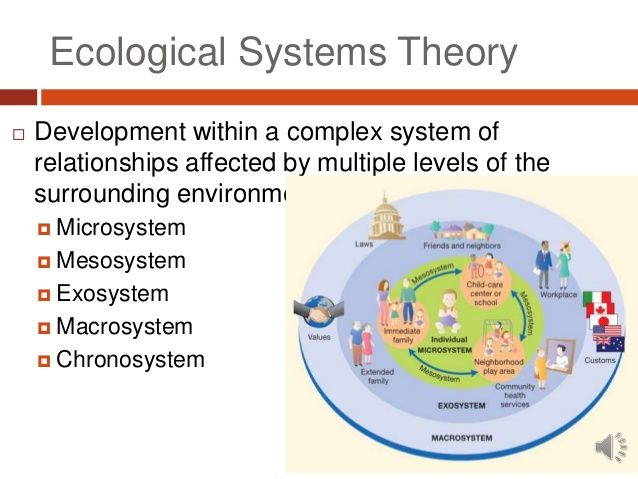 the concept and importance of the bronfenbrenner theory This article discusses the different theories of child development  forms of knowledge and the importance of  theory bronfenbrenner.