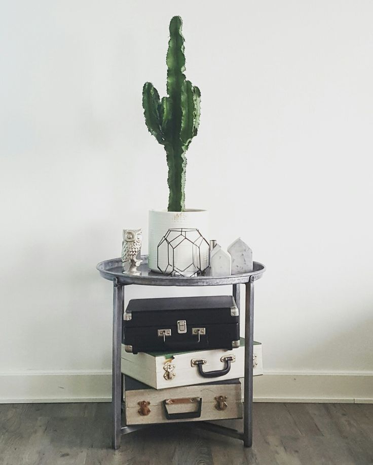 Side table with cactus and vintages suitcases